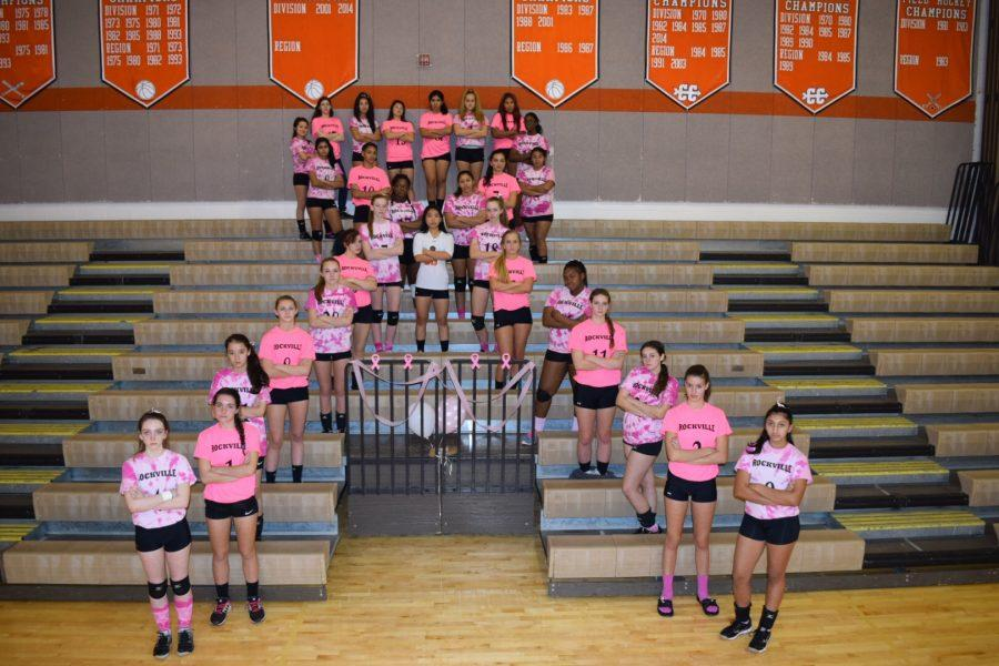 Members+of+varsity+and+JV+volleyball+pose+before+the+Dig+Pink+game.+