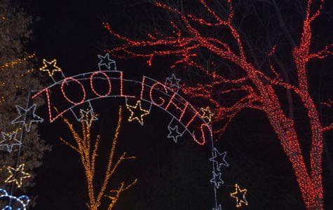 ZooLights Best Lights Display