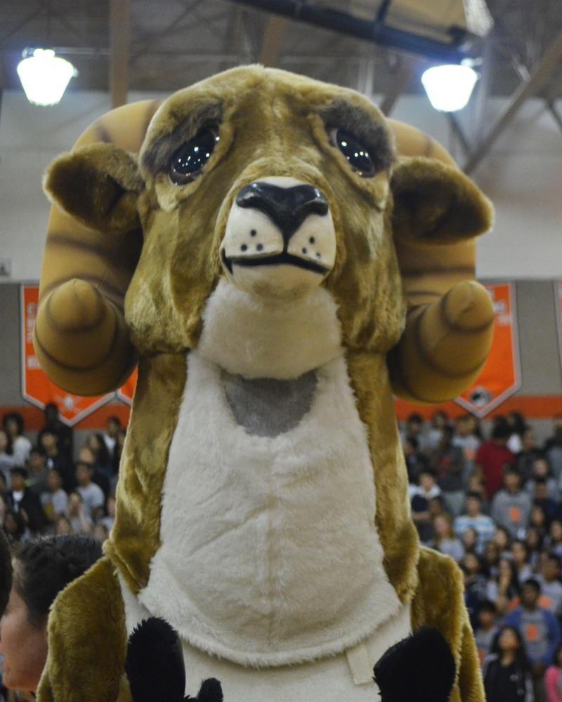 Rammy is super hyped for the fall pep rally.