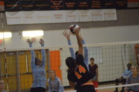 Girls Varsity Volleyball vs. Clarksburg HS Slideshow