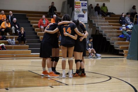 Volleyball Teams Look to Translate Strong Regular Season into Playoff Success