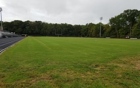 RHS field after days of rain.