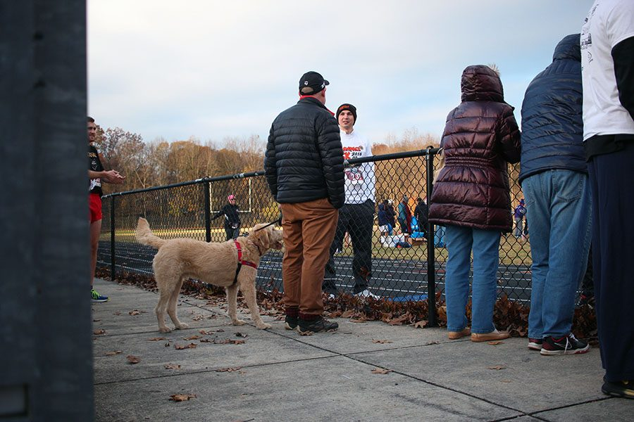 Some participants brought their dogs to complete the race. Owners and their furry friends provided inspiration to other runners.