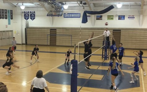 Co-ed Volleyball Swept by Warriors in First Semifinal Appearance in 20 Years