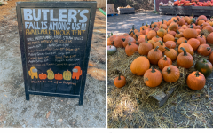 Butler's Orchard holds Family Friendly Holiday Festivities